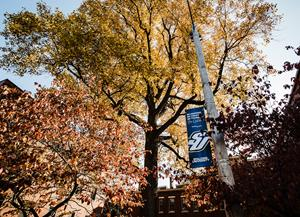 Spalding's Master of Arts in Clinical Mental Health Counseling is a 60-credit-hour program that trains students to work in a range of settings, including hospitals, social service agencies, children's homes, residential facilities for people battling addiction, or private practice. // Photo Courtesy of Spalding University