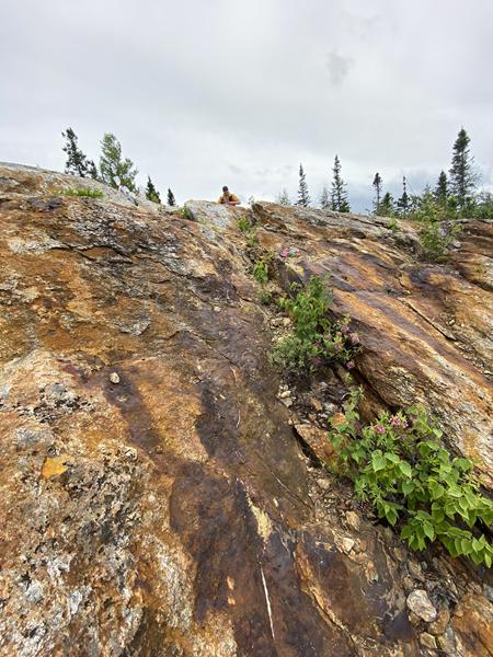 Photograph 1 - Bedrock exposure showing prospective alteration