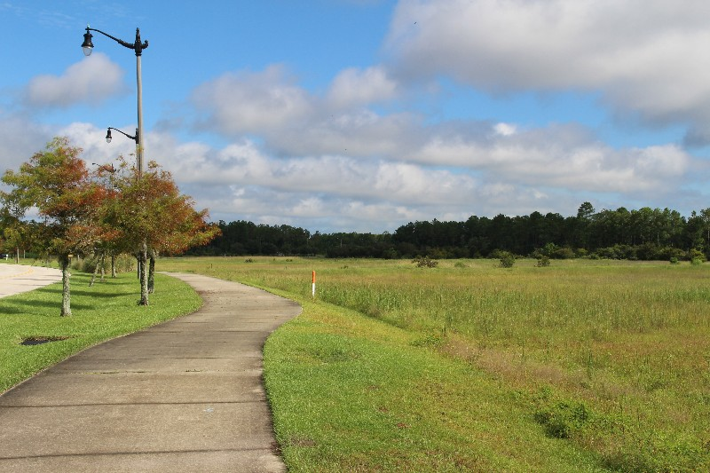 Flagler County Vacant Land for Sale