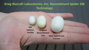 Kraig Biocraft Laboratories Recombiant Spider Silk Cocoon