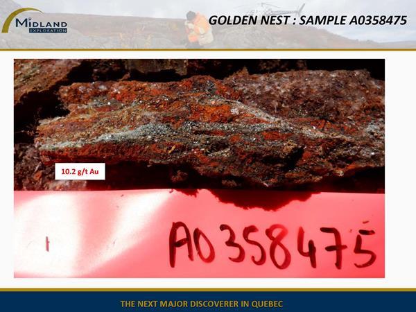Figure 8 Golden Nest Sample A0358475