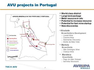 AVU projects in Portugal