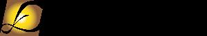 Efinix Logo (Feb 2019).png
