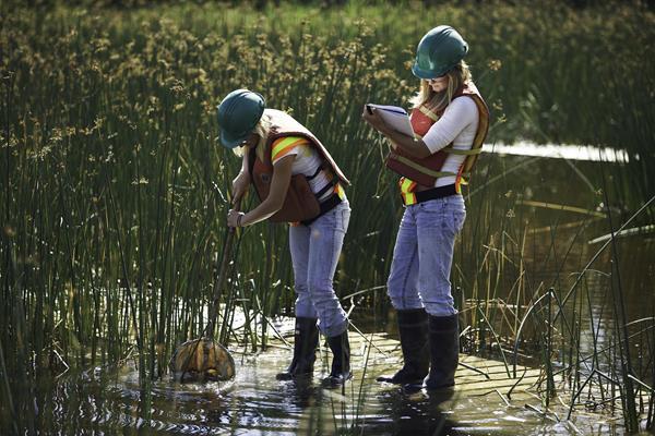 Suncor employees monitoring wetlands, courtesy Suncor Energy Inc.