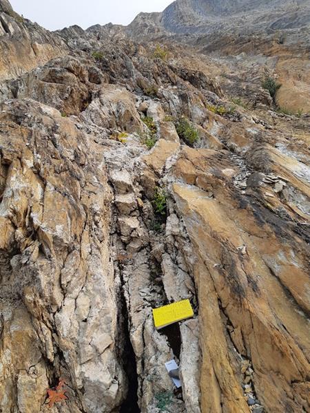 Figure 2:  Zone 2 Cu-Ag mineralization