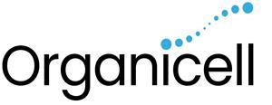 Logo  age001.jpg