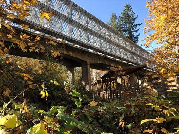 240' overbridge spiketon creek