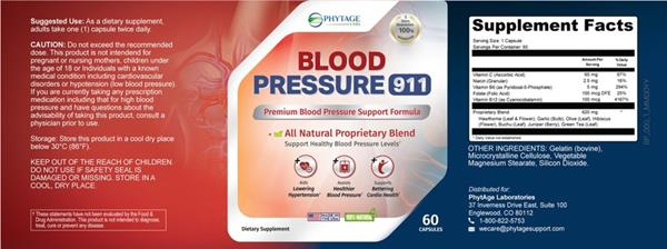 What Does Blood Pressure 911 Do? Find Out By Reading This Review by MJ