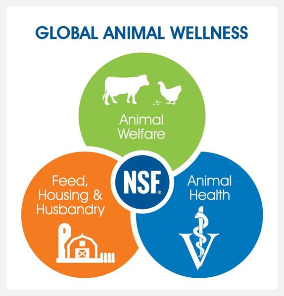 NSF Global Animal Wellness Standards encompass key elements with complex overlaps and interactions.