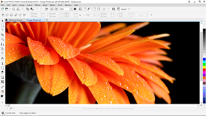 CorelDRAW Home & Student Suite 2019: Powerful Graphics