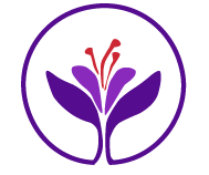 Seedo Corp Logo.png