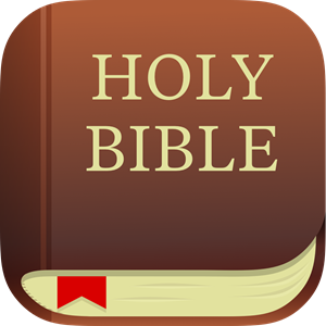 Image result for bible app icon