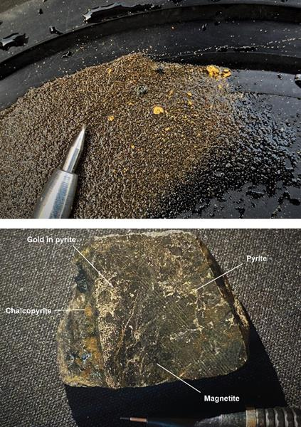 Gold grains and copper-gold mineralization