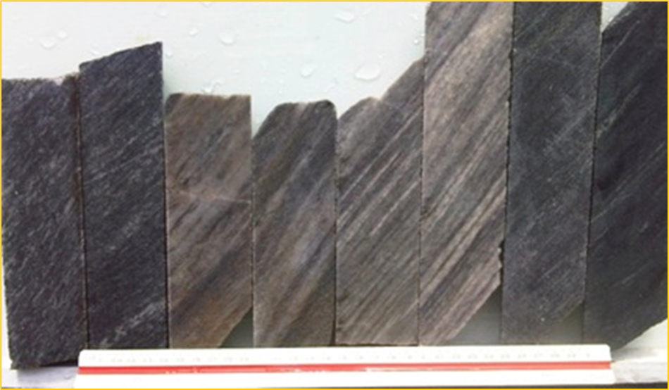 IMAGE OF TYPICAL CORE FROM POSSE GOLD DEPOSIT