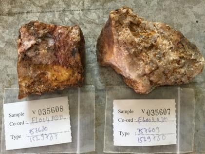 Wild Boar samples 035608-17.6 gpt AU and 035607-19.45 gpt AU