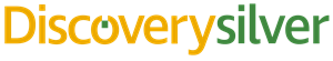 Discovery Silver Logo.png