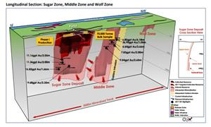 Longitudinal Section: Sugar Zone, Middle Zone and Wolf Zone