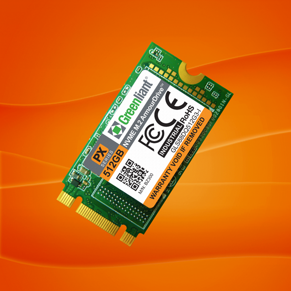 NVMe M.2 2242 ArmourDrive SSD