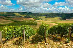 0_int_Bordeaux3.jpg