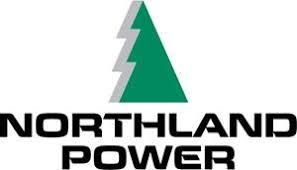 NPI Logo.jpg