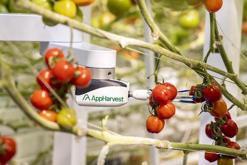 AppHarvest intelligent robot harvester
