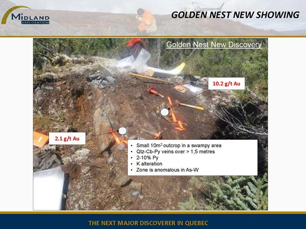 Figure 7 Golden Nest New Showing