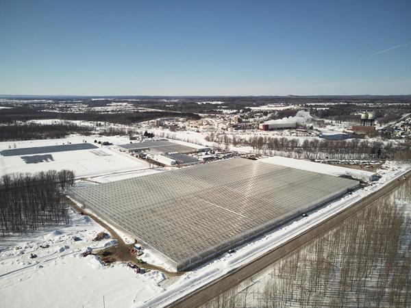 HEXO's 1 million sq. ft. greenhouse