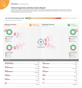 Critical Segments and Data Assets Report