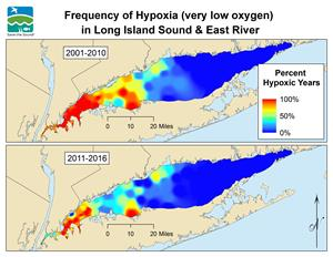 How healthy are new york area waters save the sound for Long island sound fishing report