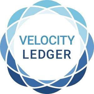 Velocity Ledger.jpg