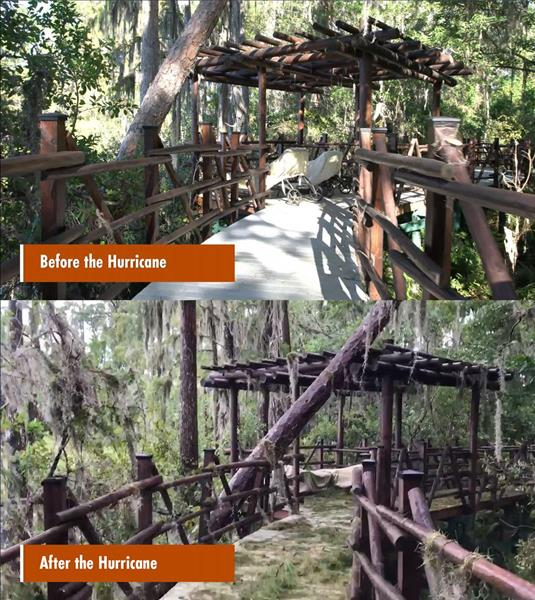Before and After photos take of YBC's private estate boardwalk located in Odessa, FL approximately 35 miles west of Hurricane Irma's Path through central Florida.