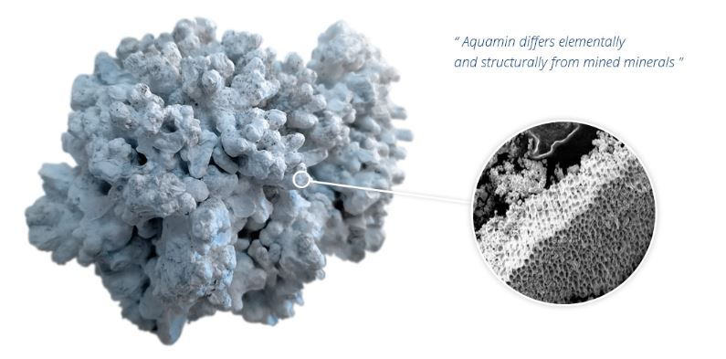 Aquamin Unique Marine Multimineral Complex