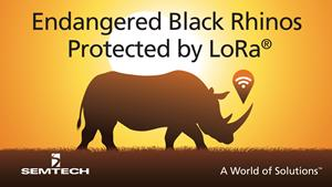Semtech LoRa Technology Tracks Location of Endangered Black Rhinos in Africa