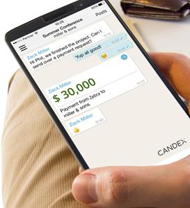 Candex makes enterprise payments easy