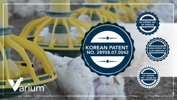 Korean-Patent-(2x)