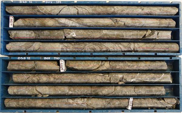 Figure 3a: Picture of Diamond Drill Core Samples from Hole DSB-12