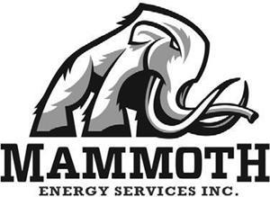 Mammoth Energy Services, Inc  Announces Fourth Quarter and