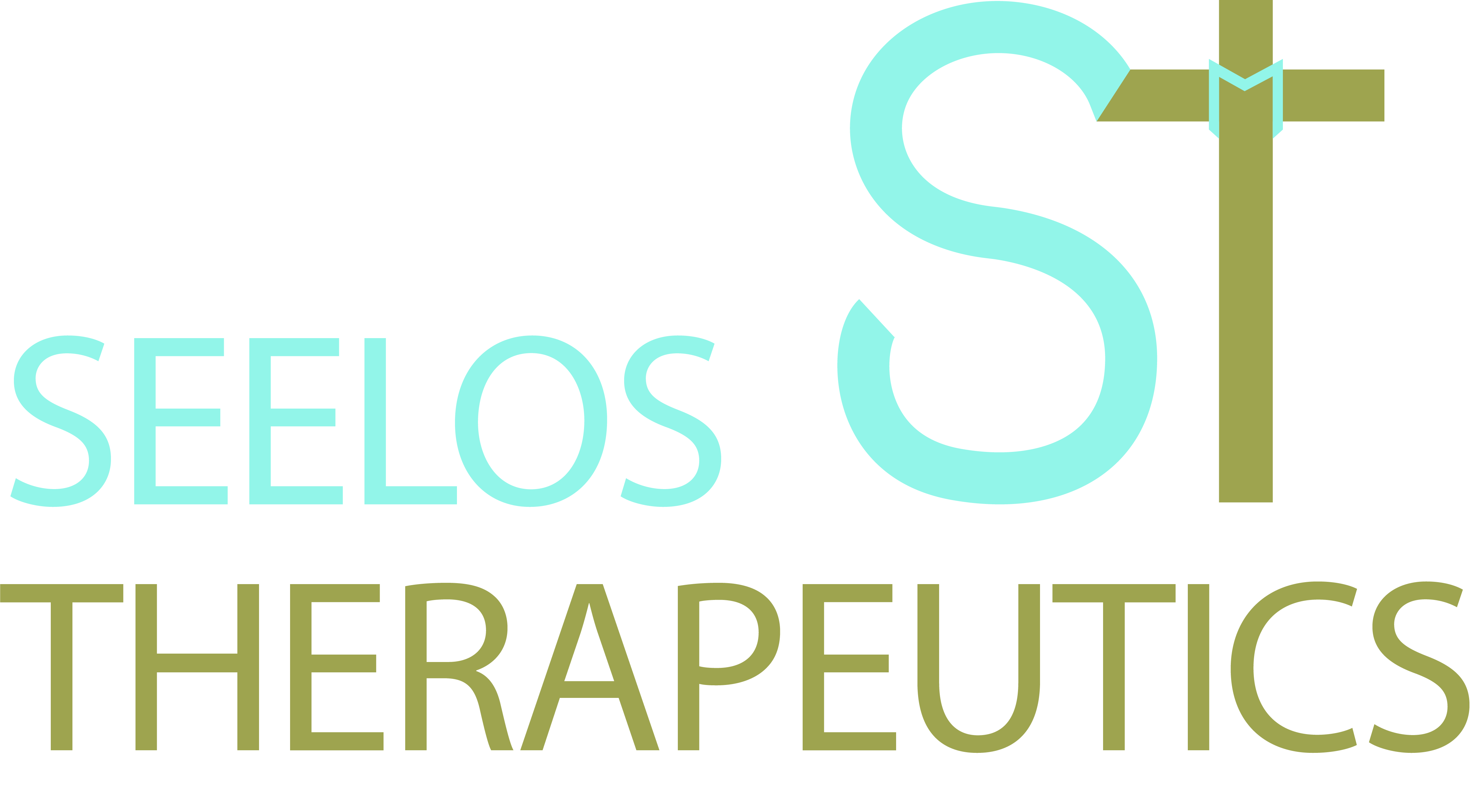Seelos_full logo and icon color.jpg