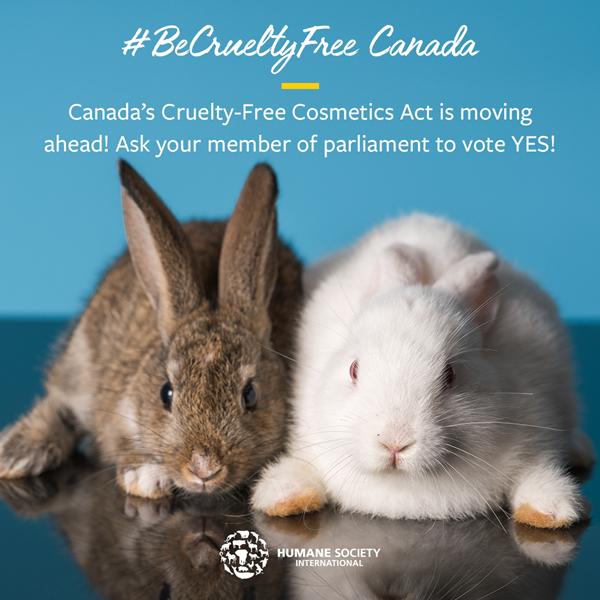 sharegraphic-bcf-Cruelty-Free-Cosmetics-Act-launches
