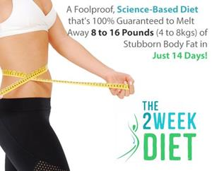 The New Quick Weight Loss Diet Plan To Lose Weight Fast With The 2