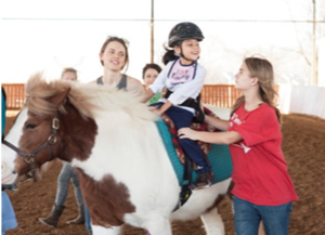 Horses for Healing with Equest.org