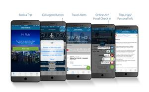 Travel and Transport Dash Mobile App