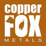 CF Metals_logo_RGB.jpg