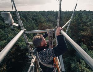 Greenhousegas measurements above forests in the Netherlands