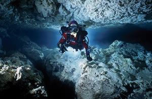 0_medium_Diving_001.jpg