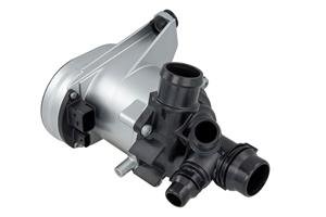 Magna electronic water pump