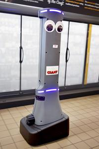 Large Scale Grocery Industry Robot Deployment