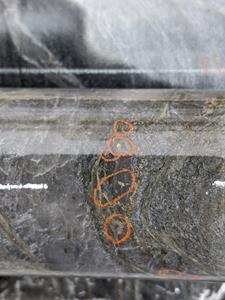 Figure 5: Core Photo of Visible Gold in hole PEN-19-39 (sample at 310.5 m downhole)