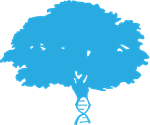 arbor-logo-tree-color.png
