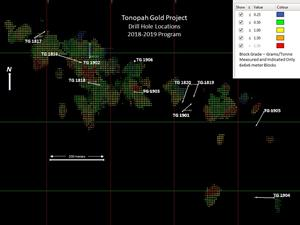 Tonopah Gold Project